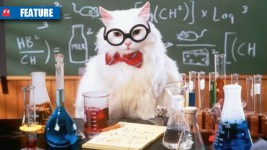 Science-Chemistry-cat-feature