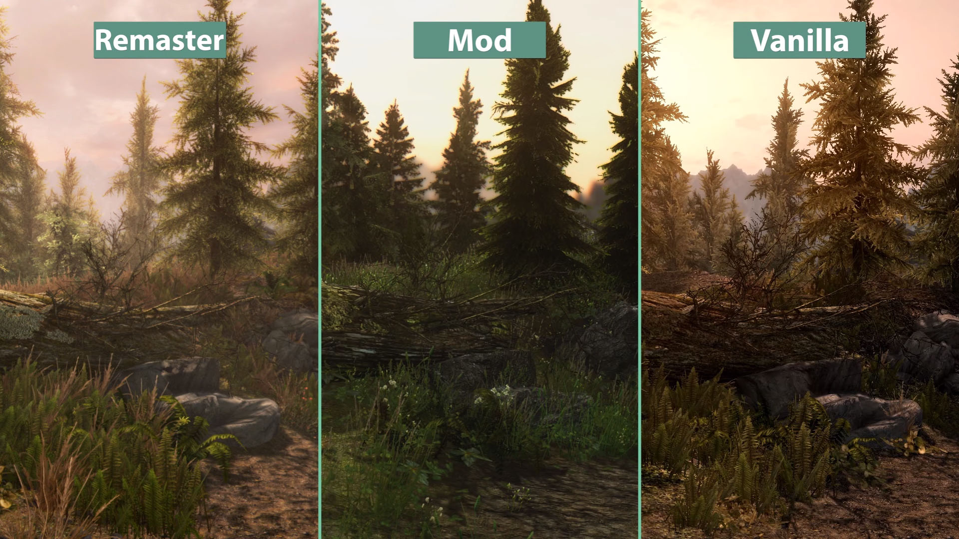 Skyrim Special Edition versus PC mods – graphics comparison